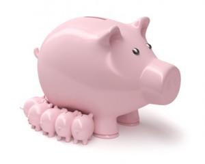 Sparschwein Wachstum